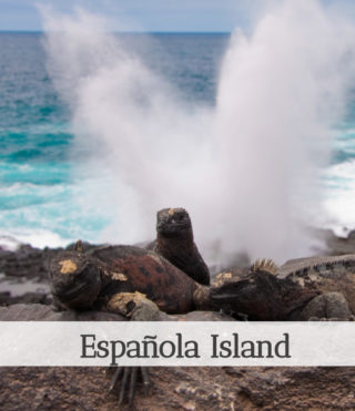 española-island-route
